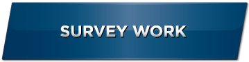 gallery-survey-work